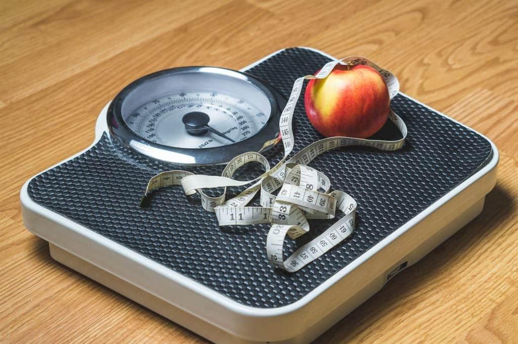 ביטוח אחריות מקצועית לדיאטניות